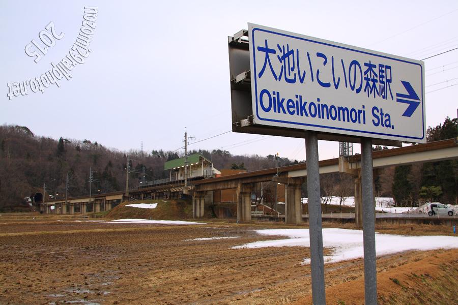 oikeikoinomori_03_
